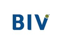 BIV CORPORATION